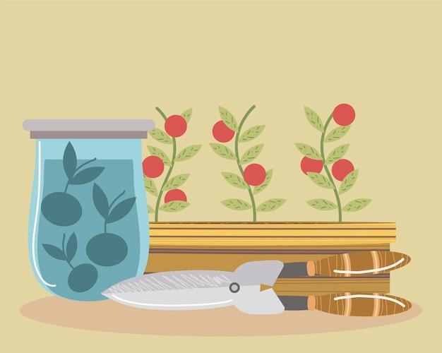 냄비와 주스 그림에서 토마토 트리밍을위한 가정 정원 가위