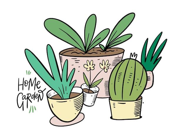 홈 그레이 든. 가정 냄비에 녹색 식물. 만화 스타일. 외딴.