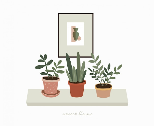Home green potted plants on the shelf. indoor plants and a picture to decorate the interior of the house. scandinavian style illustration, home decor. illustration on white isolated background.