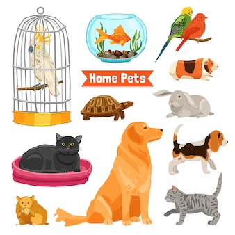 Home pets set Free Vector