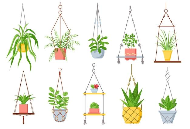 ハンギングポットのホームプラント。マクラメロープの鉢植えの観葉植物、多肉植物、サボテン。居心地の良いスカンジナビアスタイルのベクトルセットの装飾的な植物。インテリアのイラスト観葉植物
