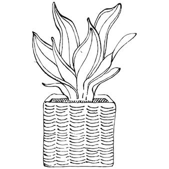 ヴィンテージのイラストを彫刻、鍋に家の植物