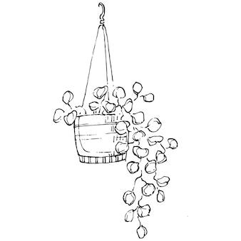 鉢植えのホームプラントのスケッチ。インテリアの家やオフィスの装飾のための吊り下げ式植物で成長している花の孤立したイラストを描く外形図。庭の花のベクトル。