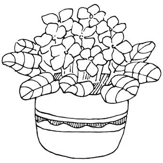 ポット スケッチのホーム プラント。インテリアの家やオフィスの装飾のための吊り下げ式植物で成長している花の孤立したイラストを描く外形図。