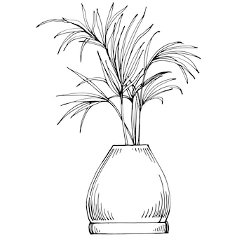 Home plant in pots sketch. outline drawing isolated  illustration of growing flowers in a hanging plant for interior home or office decoration. vector of garden flowers.