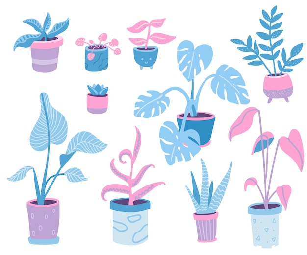 Home plants collection doodle illustrations of indoor potted plants different pots and leaves