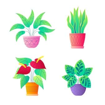 Домашние растения в векторной коллекции цветочные горшки.