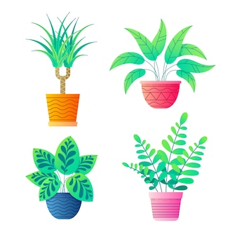植木鉢の家の植物はベクトルコレクションです。