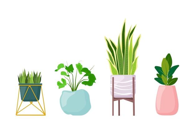 Комнатные растения в горшках на подставке суккуленты фикус вектор