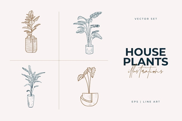 Home plants isolated on a white background collection of indoor plants in pots home decor