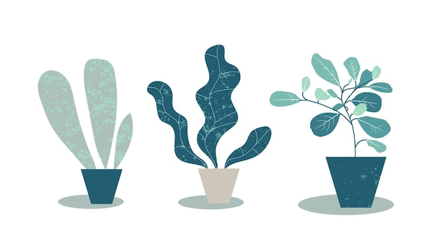 Home plants in pots. simple flat illustration of potted plants. modern design with monstera leaves and tropical plants. artistic fashion print. vector eps10 illustration