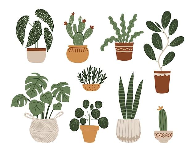 観葉植物ベクトルセット。自由奔放に生きるスタイルの手描きイラスト。ベクトルクリップアート。