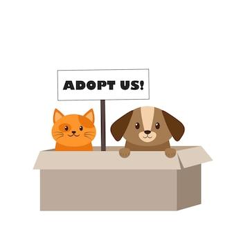 Бездомные кошка и собака в картонной коробке ждут усыновления