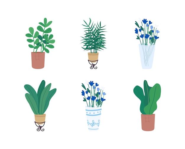 Набор плоских цветных объектов homeplants