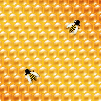 Honey background and bee