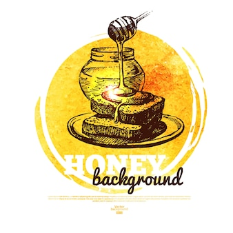 Honey banner with hand drawn sketch and watercolor illustration