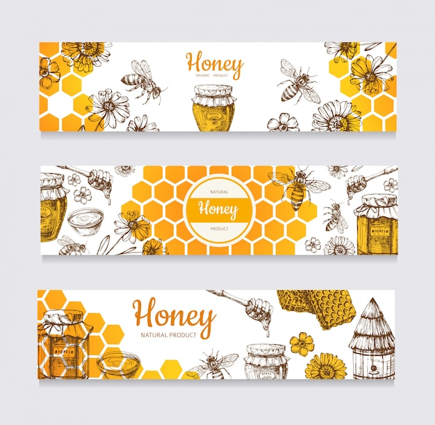 Honey banners. vintage hand drawn bee and honeyed flower