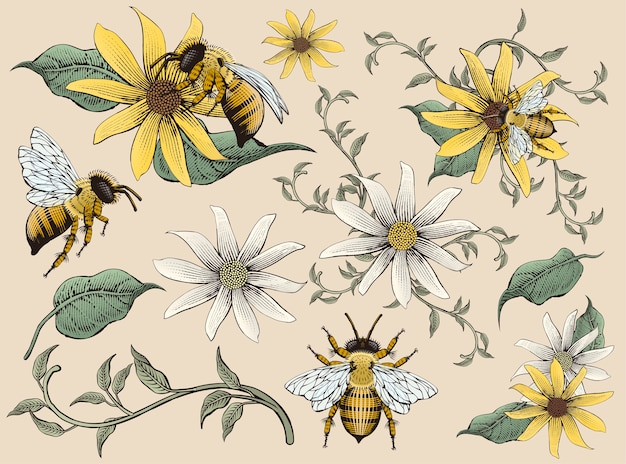Honey bees and flowers elements, retro hand drawn etching shading style , colorful tone