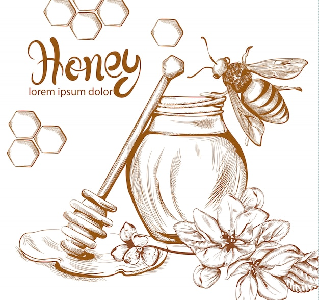 Honey bees jar line art