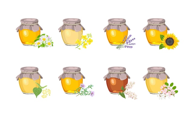 Honey of different type in glass jar set.