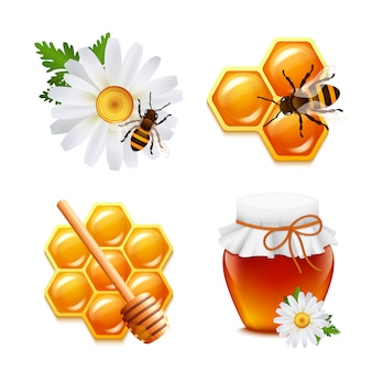 Honey food elements set with daisy bumblebee honeycomb isolated vector illustration