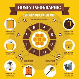 Honey infographic banner concept.