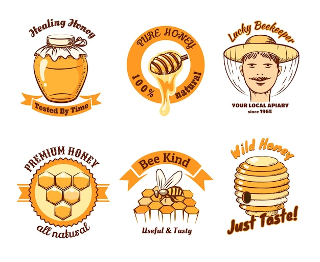 Etichette di miele e logo di apicoltura. cibo dolce, insetti e cellule, nido d'ape e cera d'api, pettine e cera.
