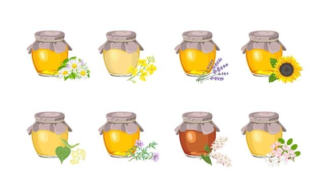 유리 항아리 세트에 다른 유형의 꿀.