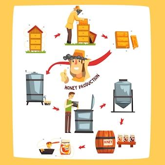 蜂蜜の生産プロセスの段階、養蜂家が蜂蜜を収穫し、白い背景の上の瓶漫画イラストに保存