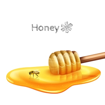 Honey puddle with stick