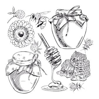 ハニーセット。蜂蜜、ミツバチ、ハニカムの瓶。手描きイラスト