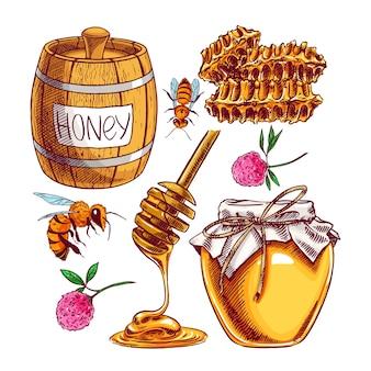Медовый набор. банки меда, пчелы, соты. рисованная иллюстрация