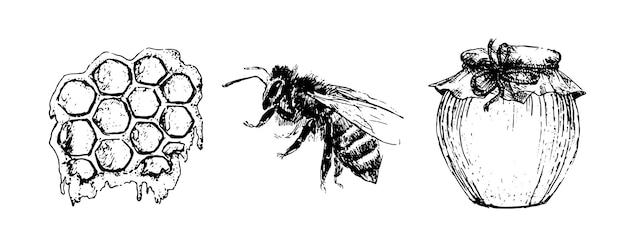 Медовый набор старинные рисованной иллюстрации гравированные натуральные продукты