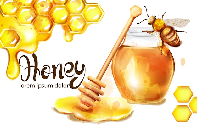 Honeycomb banner watercolor illustration