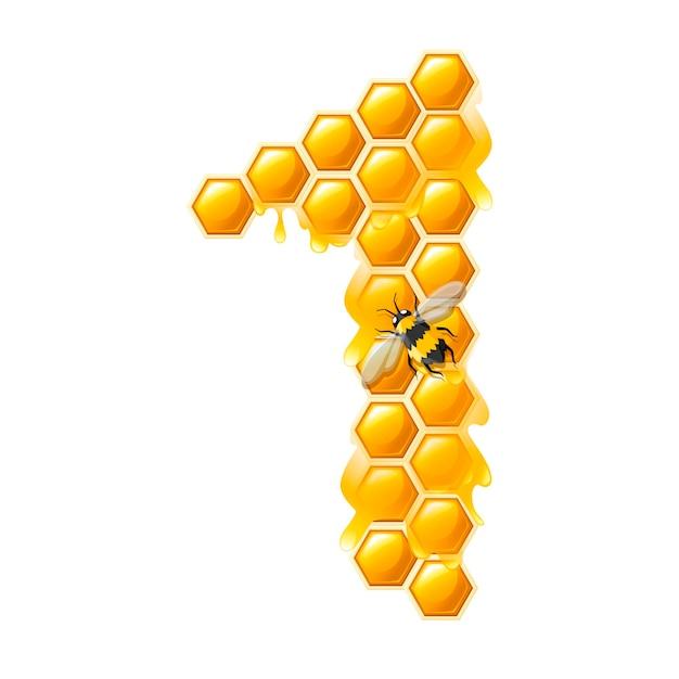 Honeycomb number 1 with honey drops and bee cartoon style food design flat vector illustration isolated on white background.