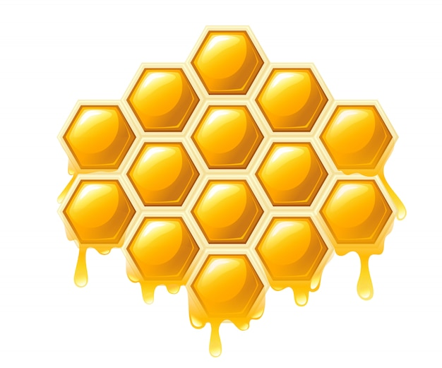 Honeycomb with honey drops. sweet honey, logo for shop or bakery.   illustration  on white background Premium Vector