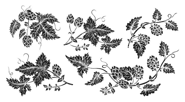 Набор стилей эскиза черных глифов ветки хмеля
