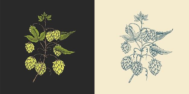 Винтажный набор с гравировкой пива из хмеля и ячменного солода
