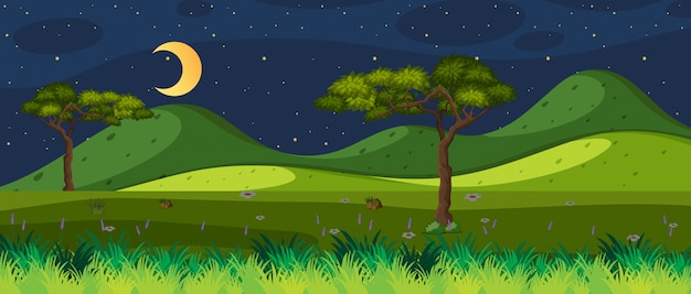 Horizon nature scene or landscape countryside with forest view and moon in the sky at night