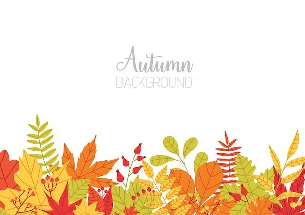 様々なカラフルな秋の木と水平方向のバナーの葉の下端とテキストのための場所