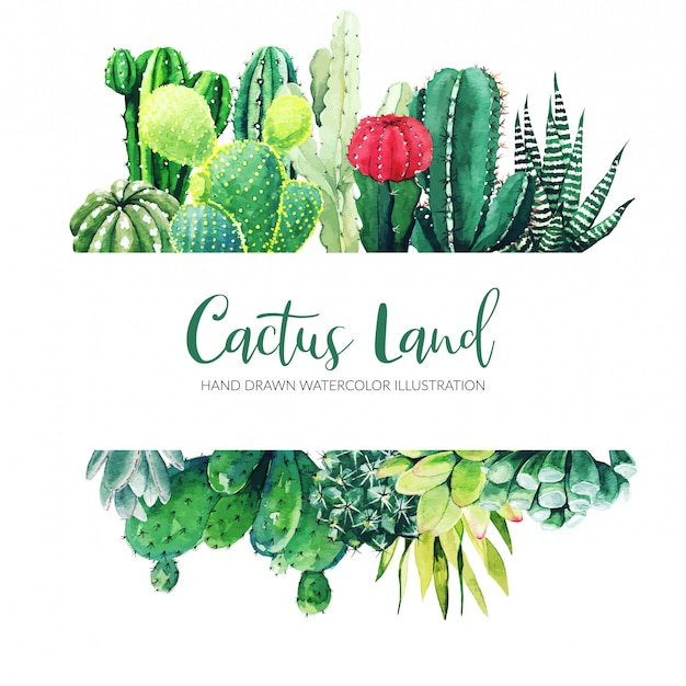 Horizontal banner with watercolor cactus and succulent plants