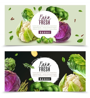 Horizontal banners set with realistic fresh farm vegetables such as cabbage cauliflower broccoli brussels sprouts isolated