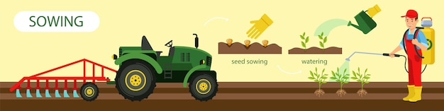 Horizontal flat banner seed sowing and watering.