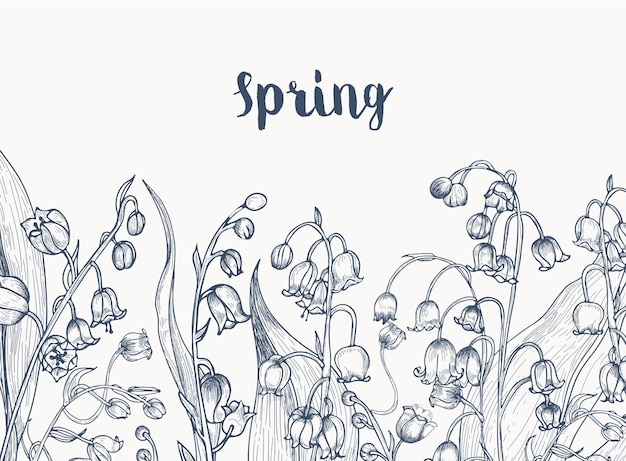 은방울꽃 꽃 식물 손으로 흰색 등고선으로 그린 수평 흑백