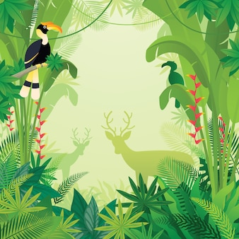 熱帯のジャングルのサイチョウと鹿