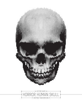 Horror human skull vector background