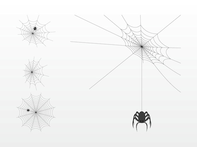 Horror insect spider webs vector