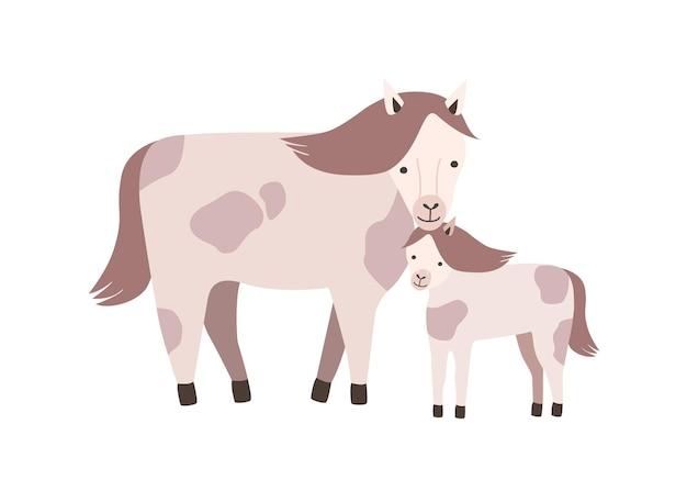 말과 새끼 또는 콜트 화이트에 격리입니다.