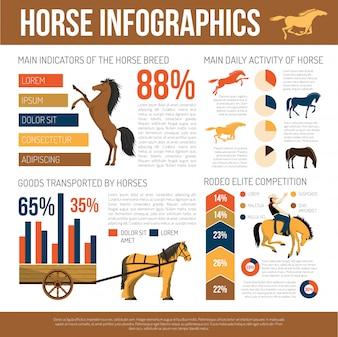 馬の品種インフォグラフィックプレゼンテーションフラットポスター