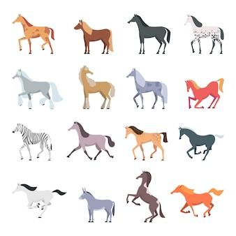 Породы лошадей. сильные красивые домашние животные в боевых позах, прыжки и прогулки на пони Premium векторы